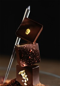 photos_culinaires_guy_renaux_choco
